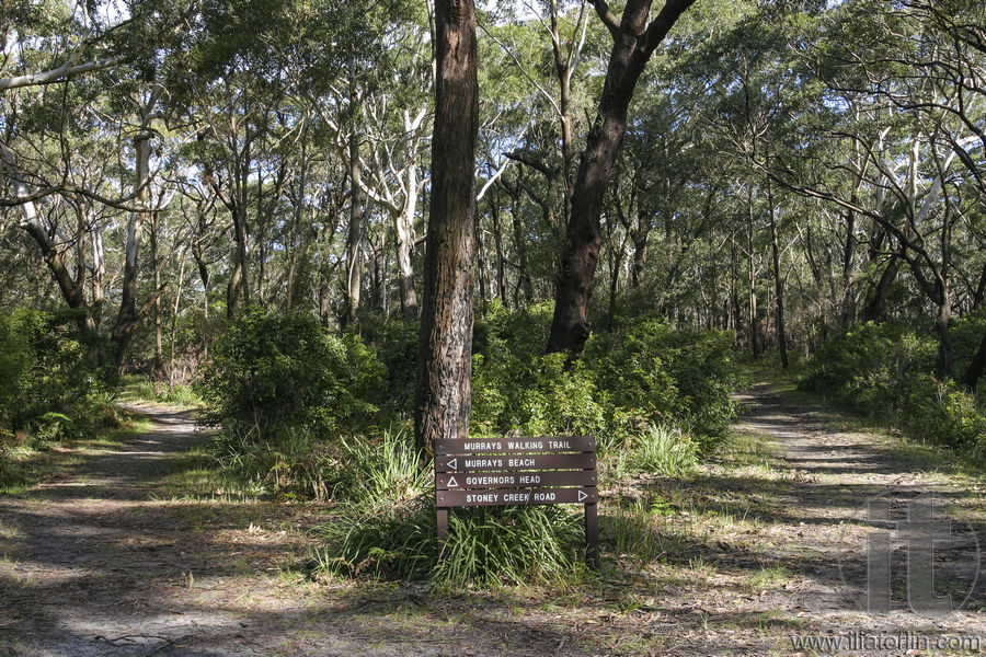 bushwalking in australia Summary page related to bushwalking (hiking, tramping) in western australia provides links to reports on the major trails and other resources.